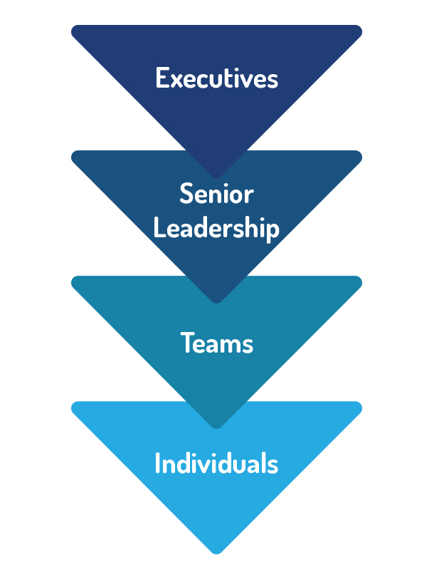 cascading leadership