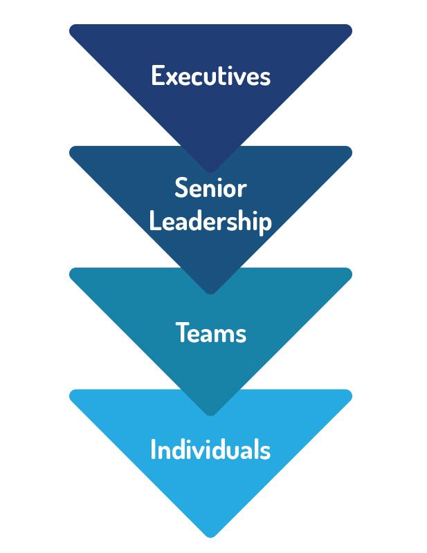 cascading leadership